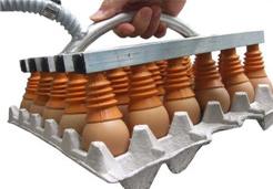 鸡蛋包装搬运用